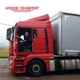 Blog - Amigos Transport is saving 7% in fuel costs with Frotcom